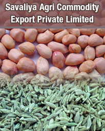 SAVALIYA AGRI COMMODITY EXPORT PRIVATE LIMITED