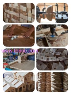 Leden Industry Development Co., Ltd
