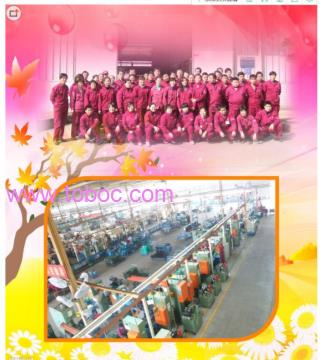 DanyangBinqian Clothing Co., Ltd., Zhenjiang City,