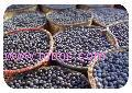 Acai Powder, Extract, Concentrate, Freeze Dried, Organic, Juice Powder, Fruit Powder, Capsules