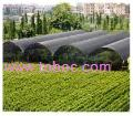 high quality hdpe agricultural net
